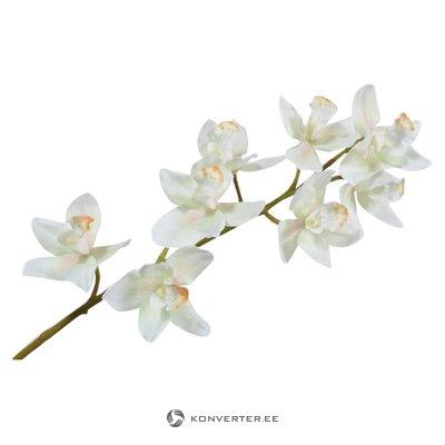 Dirbtinių gėlių orchidėja (šilko-ka) (sveika, dėžutėje)