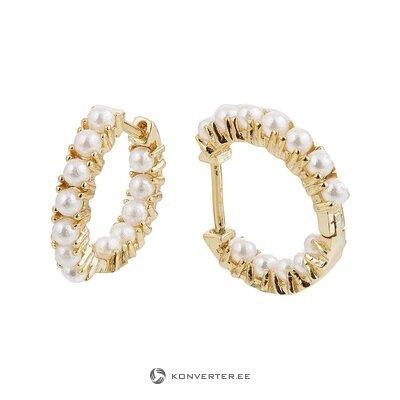 Silver earrings (the kharites) (whole, hall sample)