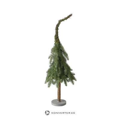 Small decorative spruce wipfel (boltze) (whole, hall sample)