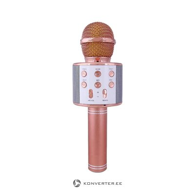 Karaoke Mikrofon Rose (Isds) (Saalinäidis, Terve)