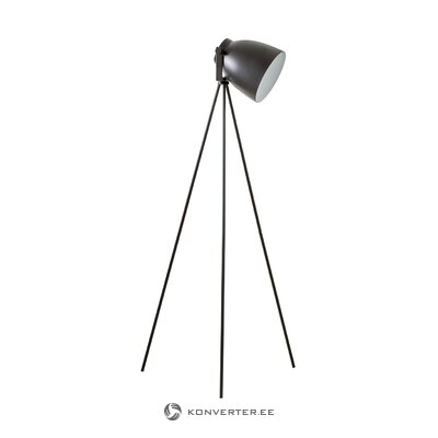 Black floor lamp (studio) (whole)