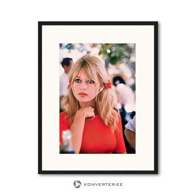 Seinäkuva Brigitte Bardot (mikä tahansa kuva)
