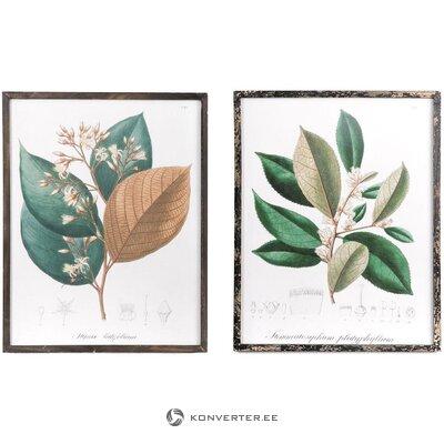 Set of wall paintings 2 pcs barbaflower (gajisa)