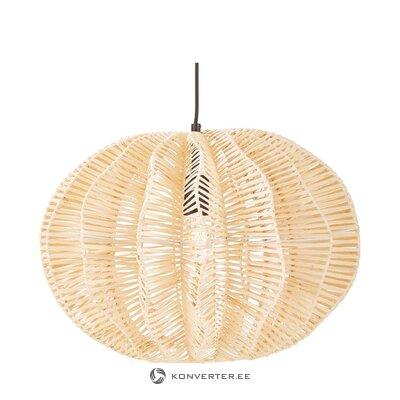 Dizainas pakabinamas šviestuvas (ufe)