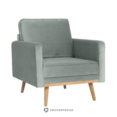 Gray velvet armchair (saint)
