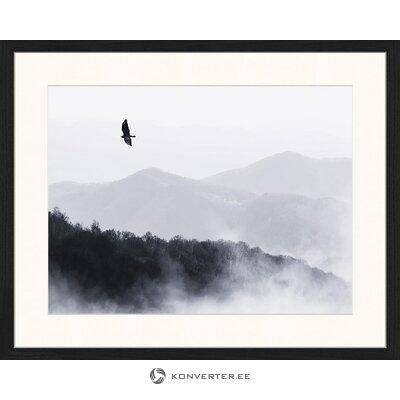 Putnu tapetes (Jacob Baden)