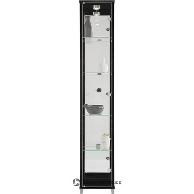 Black display cabinet (whole, hall sample)
