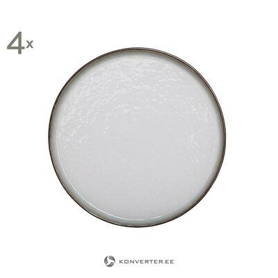 Набор пластин 4 шт (заготовки) (цеховой образец, целый)