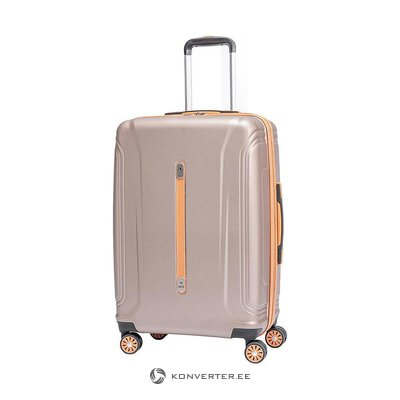 Vidutinio dydžio lagaminas (isds) (visas, pavyzdys)