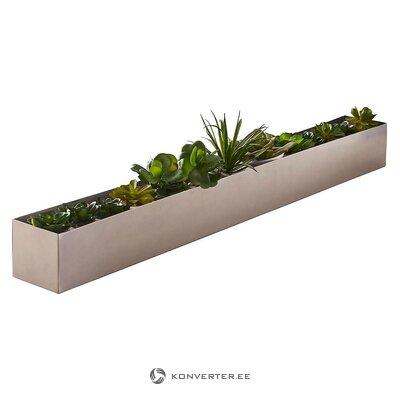 Flower planting box (xplort)