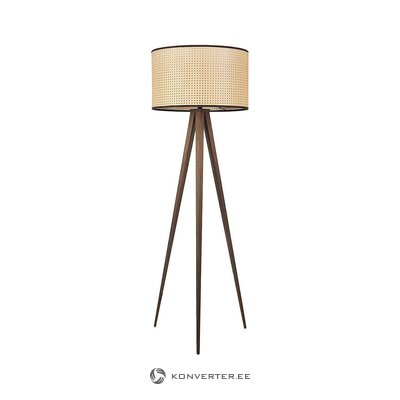 Floor lamp (zuiver) (whole, in box)