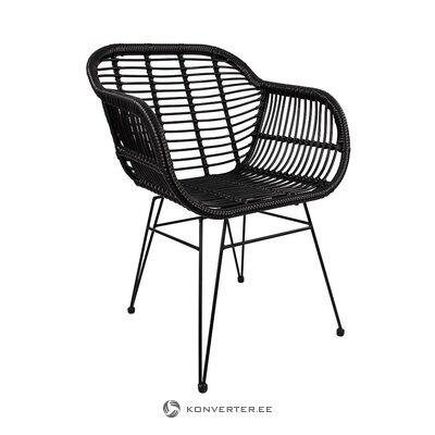 Melns dārza krēsls (costa) (veselīgs, paraugs)