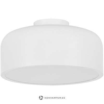 White ceiling light (none)