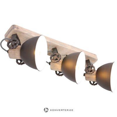 Griestu lampa (Steinhauer)