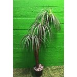 Small artificial palm in a pot