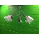 Silver ceiling light with five glasses