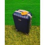 Blue suitcase (true)
